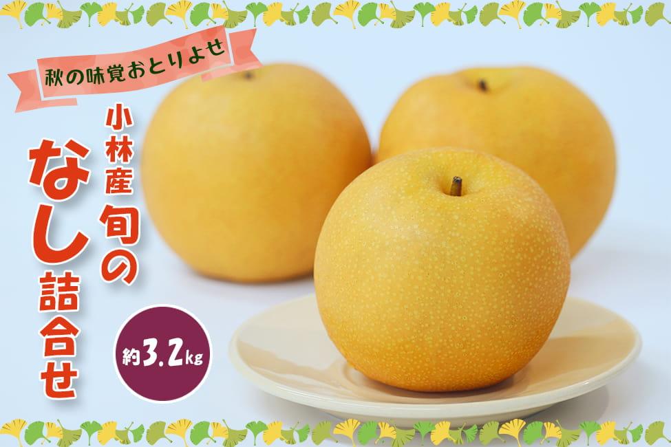 【秋の味覚おとりよせ】小林産 旬のなし詰合せ (約3.2kg)
