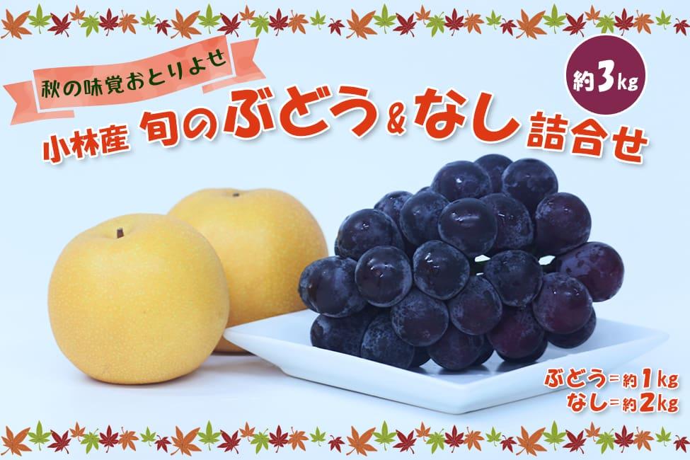 【秋の味覚おとりよせ】小林産 旬のぶどう&なし詰合せ(約3kg)