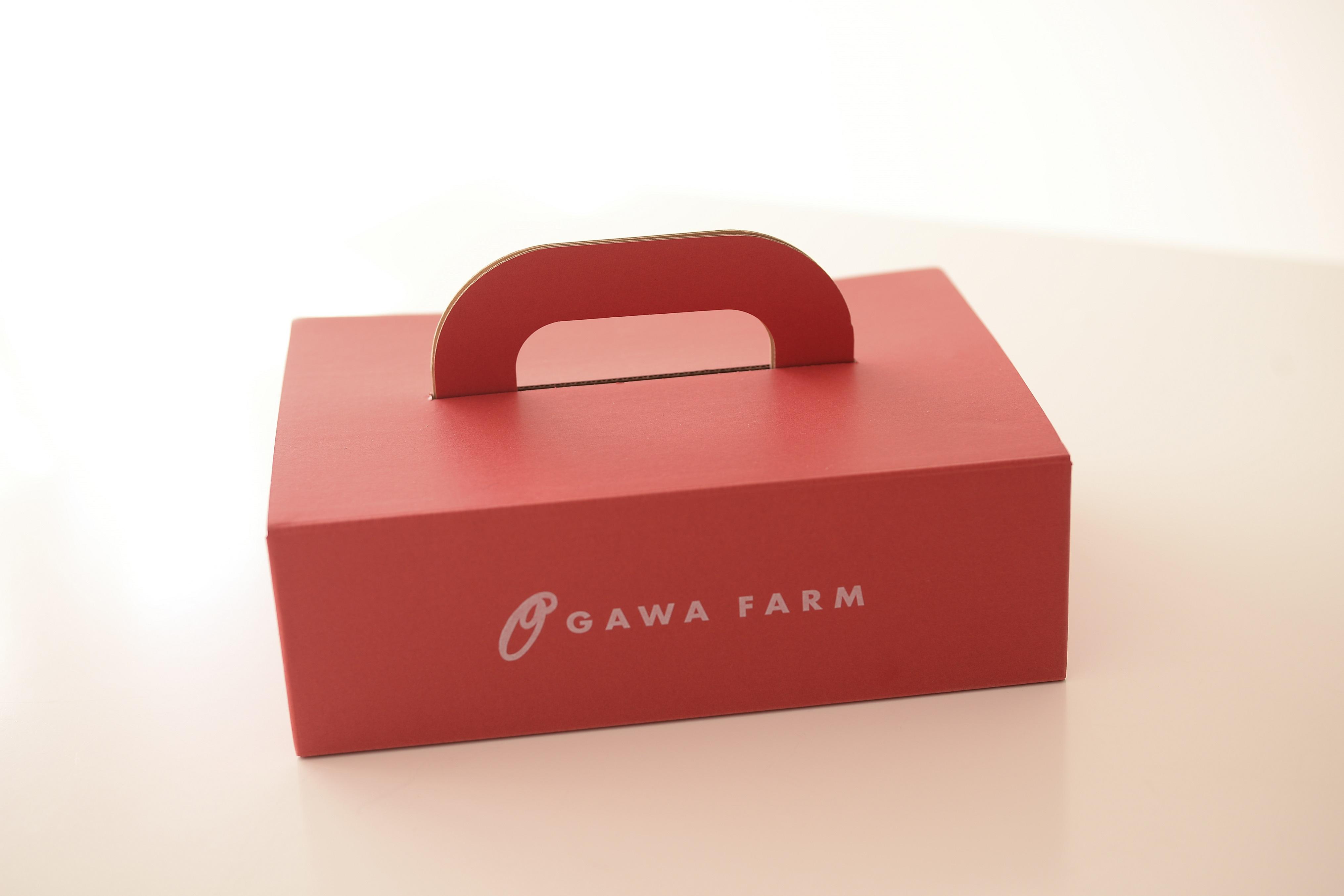 OGAWA FARM 香TOMATOギフトセット(1kg)
